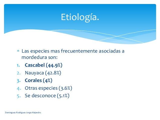 Etiología.             Las especies mas frecuentemente asociadas a             mordedura son:           1. Cascabel (44.9%...