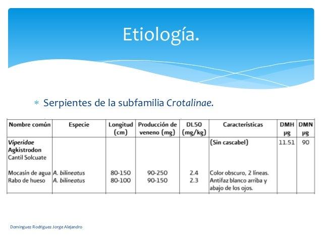 Etiología.                Serpientes de la subfamilia Crotalinae.Dominguez Rodriguez Jorge Alejandro