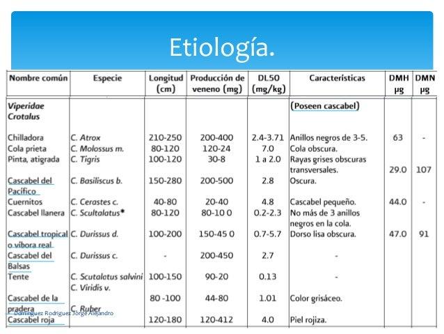 Etiología.Dominguez Rodriguez Jorge Alejandro