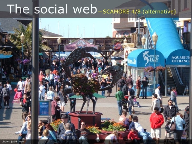 The social web—SCAMORE 4/8 (alternative)     photo: ©GM 2010