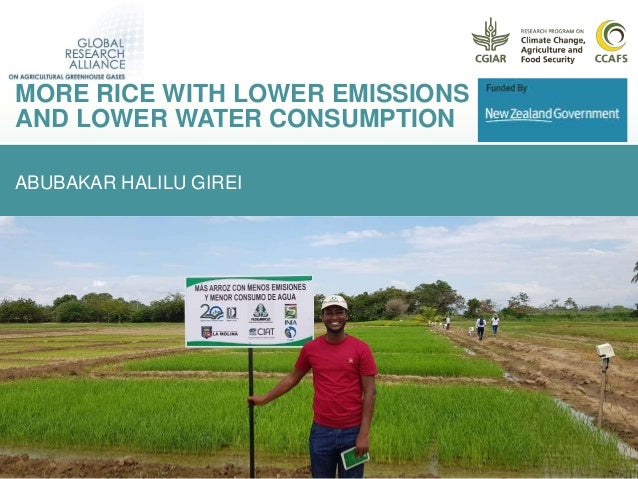 ABUBAKAR HALILU GIREI MORE RICE WITH LOWER EMISSIONS AND LOWER WATER CONSUMPTION