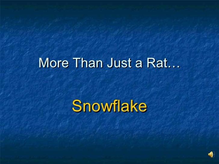 More Than Just a Rat… Snowflake