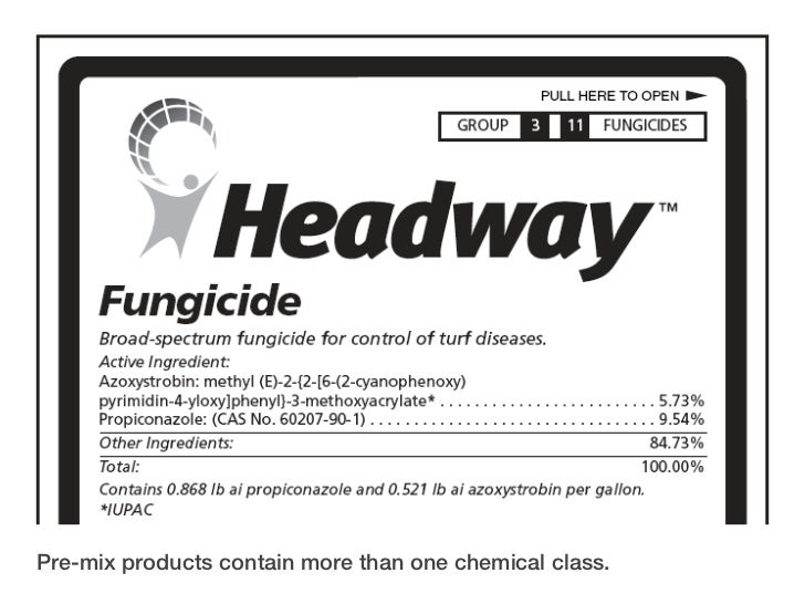 More With Less Getting The Most From Your Fungicide Program