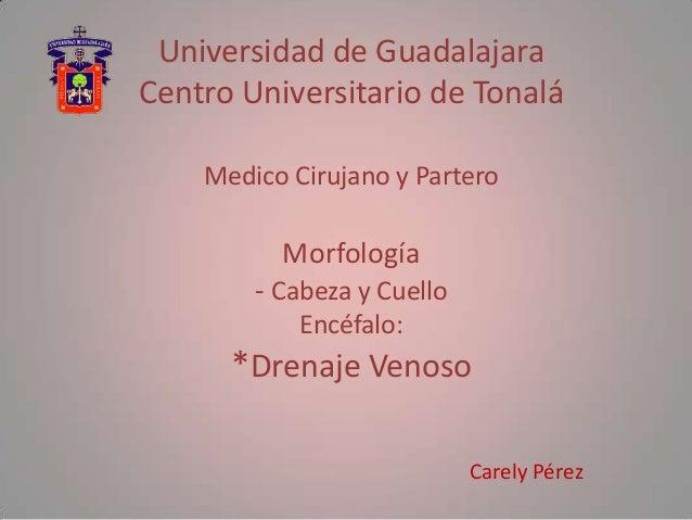 Universidad de GuadalajaraCentro Universitario de Tonalá    Medico Cirujano y Partero          Morfología        - Cabeza ...