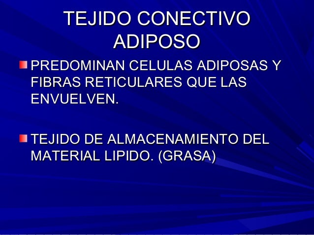 Morfofisiologia (ANATOMIA) CELULA Y TEJIDO
