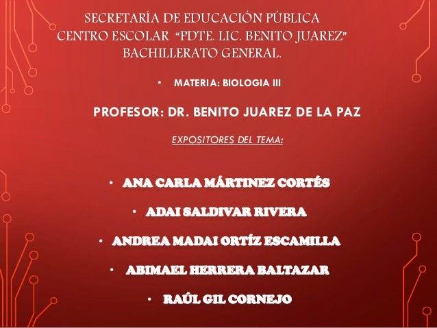 """SECRETARÍA DE EDUCACIÓN PÚBLICA CENTRO ESCOLAR """"PDTE. LIC. BENITO JUAREZ"""" BACHILLERATO GENERAL. • MATERIA: BIOLOGIA III PR..."""