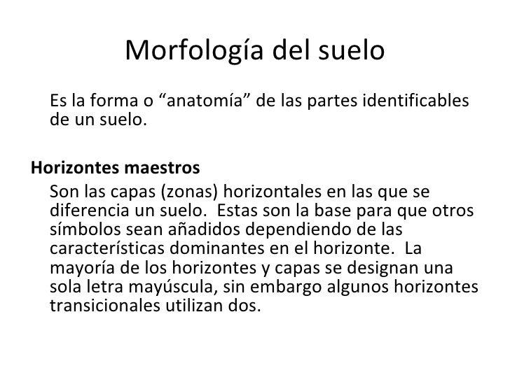 Morfología del suelo