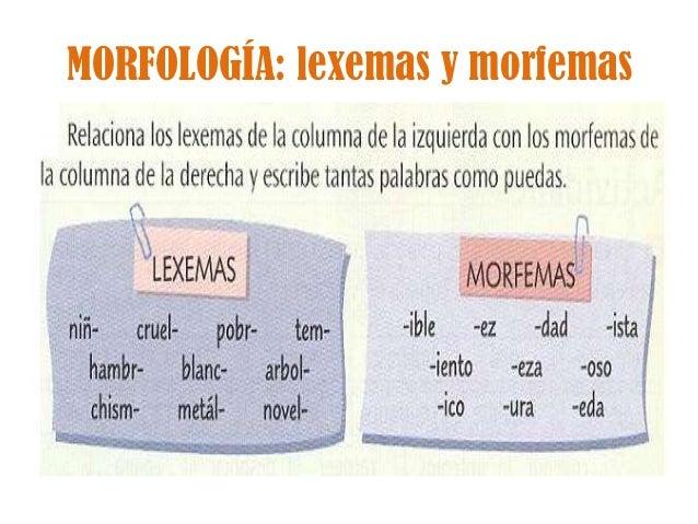 MORFOLOGÍA: lexemas y morfemas