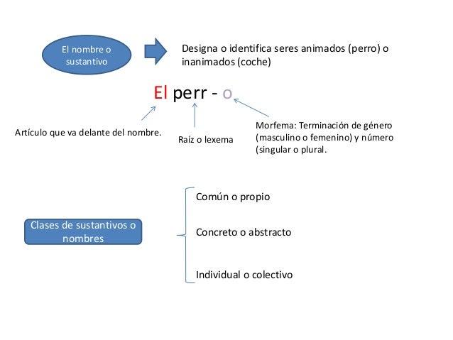 Morfología Y Ortografía I