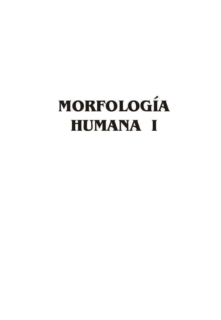 MORFOLOGÍA HUMANA I    1