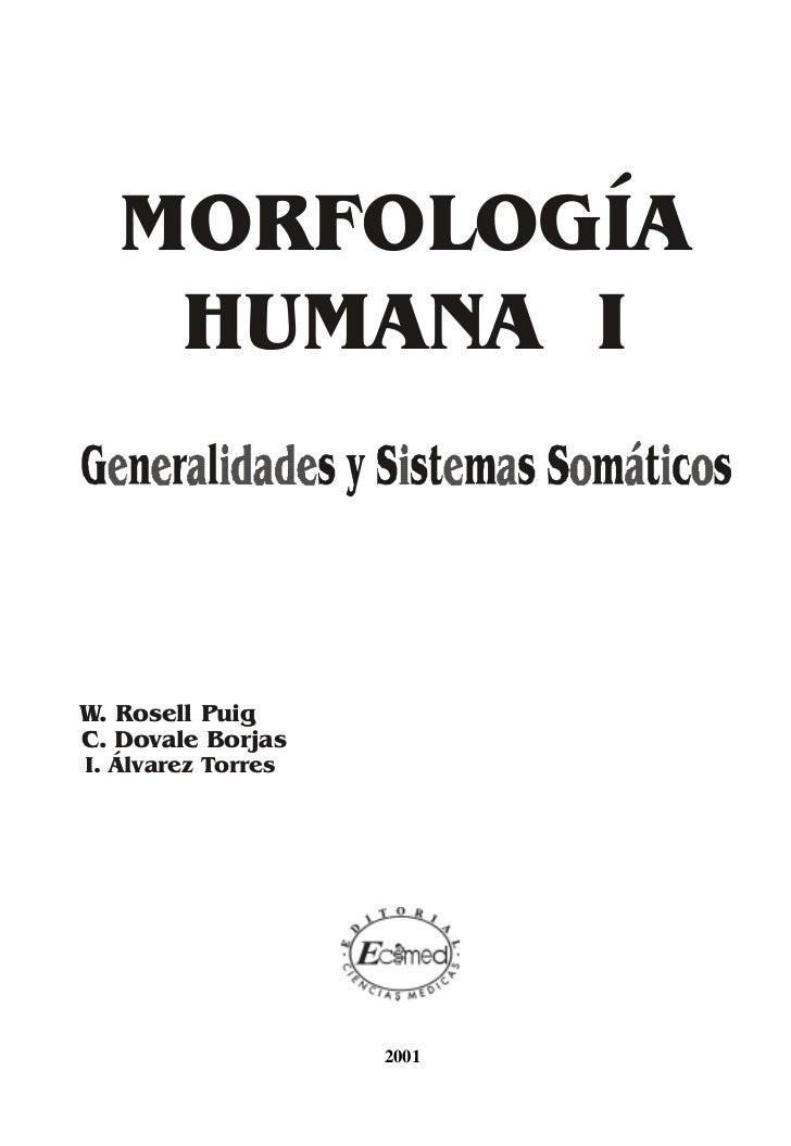 Morfologia01