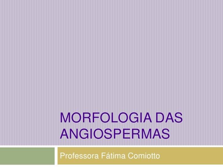 Morfologia das angiospermas<br />Professora Fátima Comiotto<br />