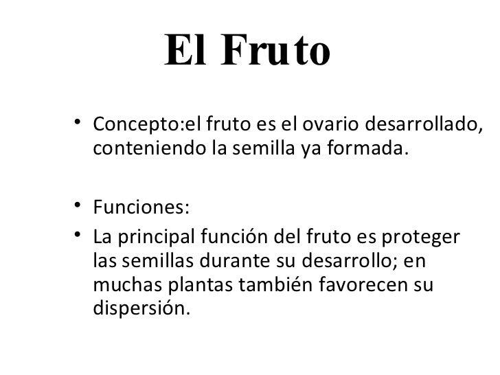 El Fruto <ul><li>Concepto: el fruto es el ovario desarrollado, conteniendo la semilla ya formada. </li></ul><ul><li>Funcio...