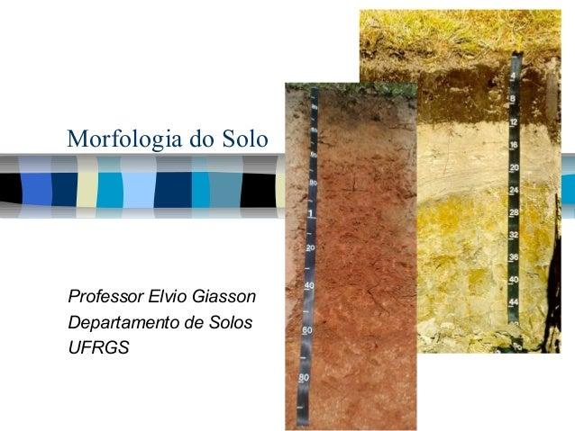 Morfologia do Solo Professor Elvio Giasson Departamento de Solos UFRGS