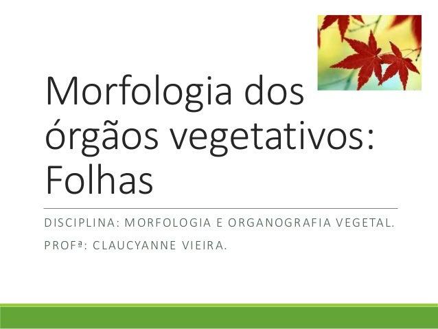 Morfologia dos  órgãos vegetativos:  Folhas  DISCIPLINA: MORFOLOGIA E ORGANOGRAFIA VEGETAL.  PROFª: CLAUCYANNE VIEIRA.