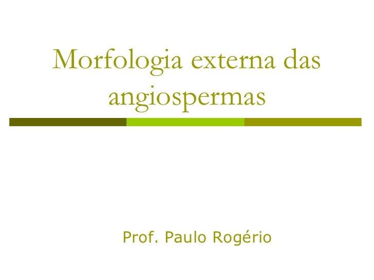 Morfologia externa das    angiospermas     Prof. Paulo Rogério