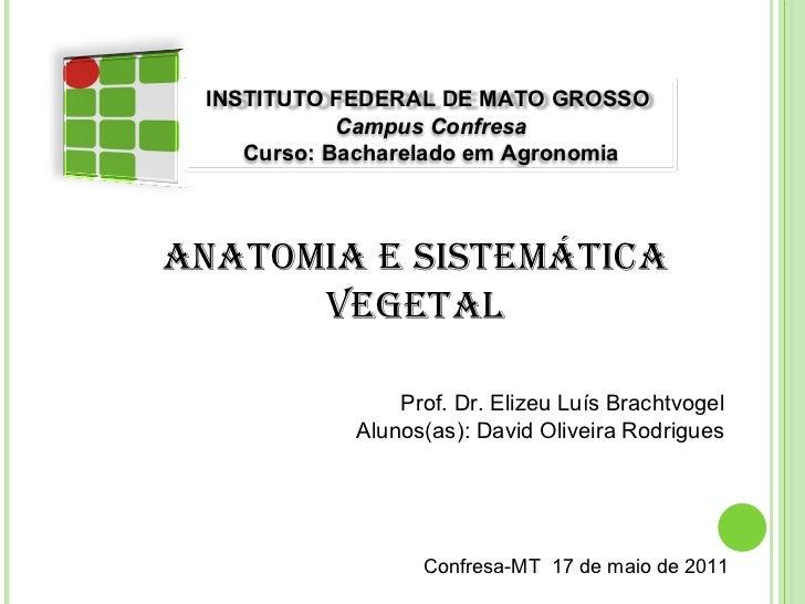 Anatomia e Sistemática Vegetal Prof. Dr.ElizeuLuís Brachtvogel Alunos(as): David Oliveira Rodrigues Confresa-MT  17 de m...