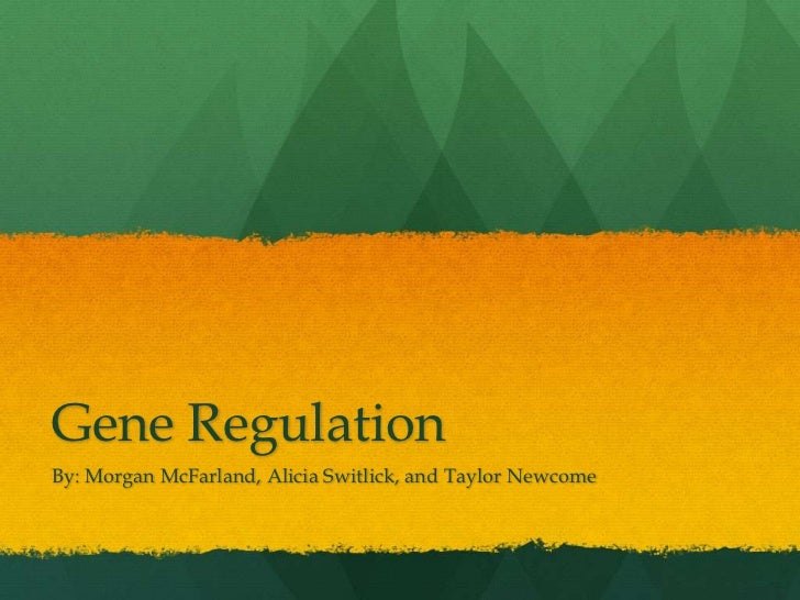 Gene Regulation<br />By: Morgan McFarland, Alicia Switlick, and Taylor Newcome<br />