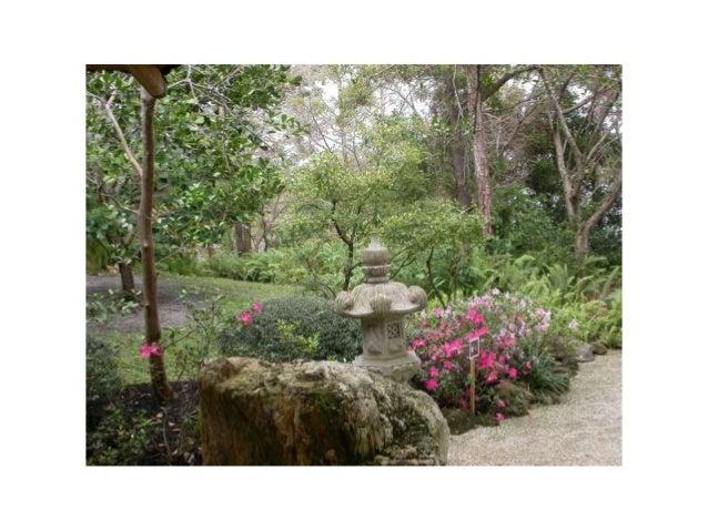 Morikami Japanese gardens and museum