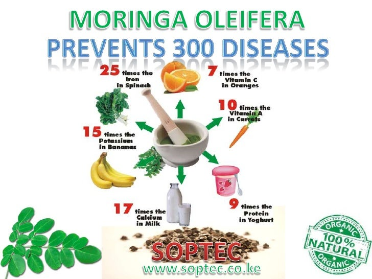 What is Moringa Oleifera and How is it beneficial to me?• Moringa Oleifera is an amazing healing plant/tree that contains ...