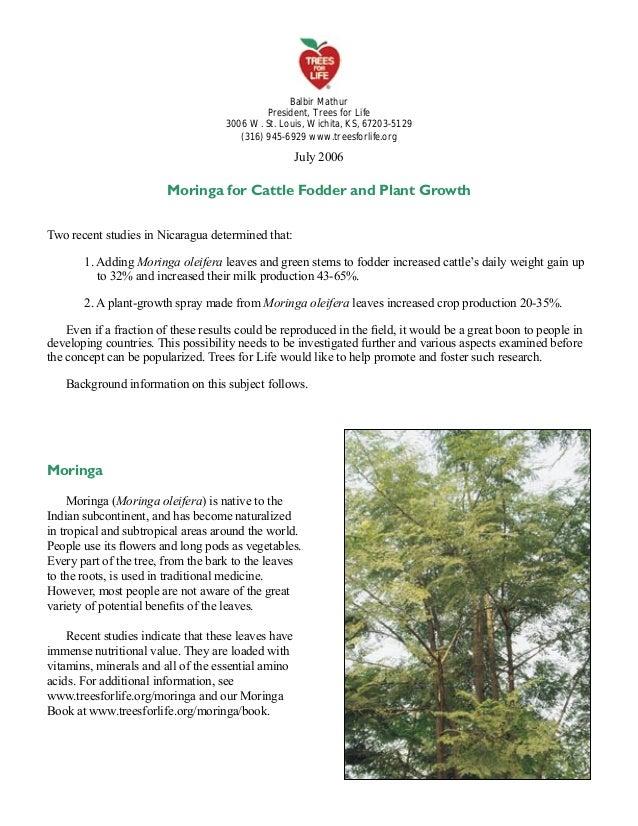 Balbir Mathur President, Trees for Life 3006 W. St. Louis, Wichita, KS, 67203-5129 (316) 945-6929 www.treesforlife.org  Ju...