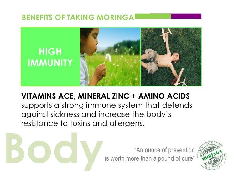Moringa Global Wellness