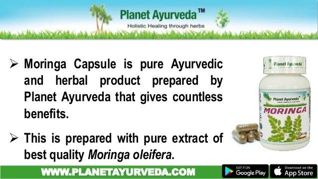 Moringa Leaves Moringa Oleifera Benefits Amp Uses