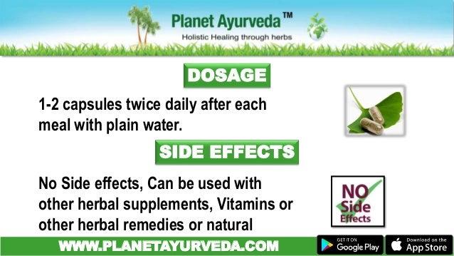 Moringa Leaves (Moringa Oleifera) Benefits & Uses Drumstick