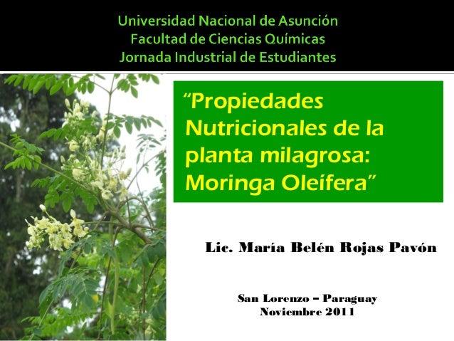"""""""Propiedades Nutricionales de la planta milagrosa: Moringa Oleífera"""" Lic. María Belén Rojas Pavón San Lorenzo – Paraguay N..."""