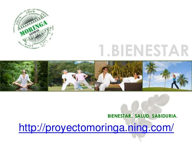 1.BIENESTAR                  BIENESTAR. SALUD. SABIDURIA.http://proyectomoringa.ning.com/