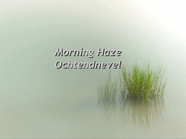 Morning HazeMorning Haze OchtendnevelOchtendnevel