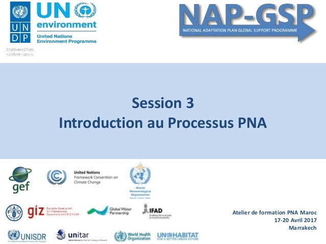 Atelier de formation PNA Maroc 17-20 Avril 2017 Marrakech Session 3 Introduction au Processus PNA