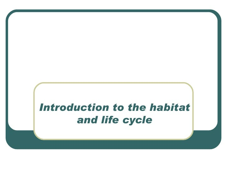 Introduction to the habitat and life cycle