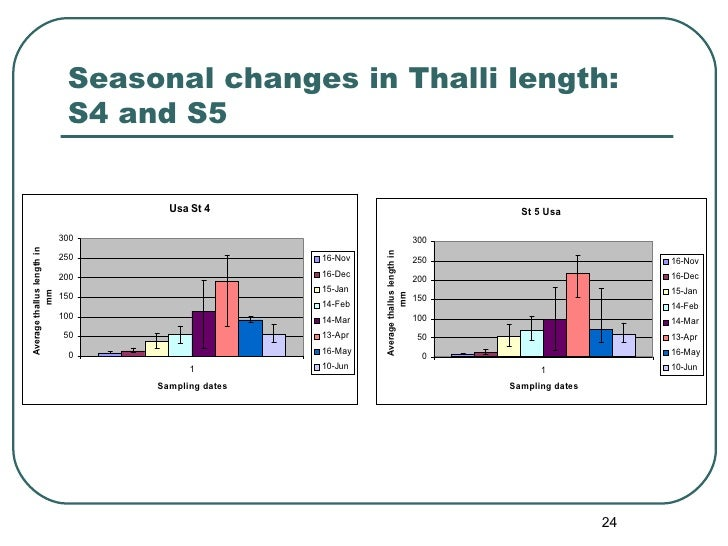 Seasonal changes in Thalli length: S4 and S5