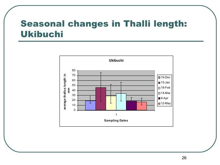 Seasonal changes in Thalli length: Ukibuchi