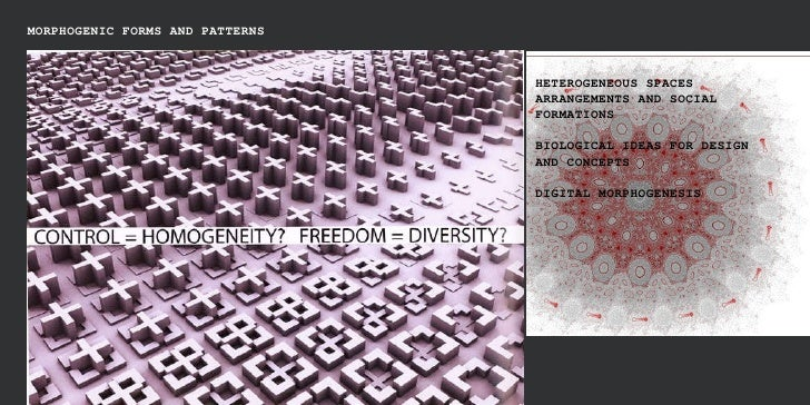 MORPHOGENIC FORMS AND PATTERNS HETEROGENEOUS SPACES ARRANGEMENTS AND SOCIAL FORMATIONS BIOLOGICAL IDEAS FOR DESIGN AND CON...