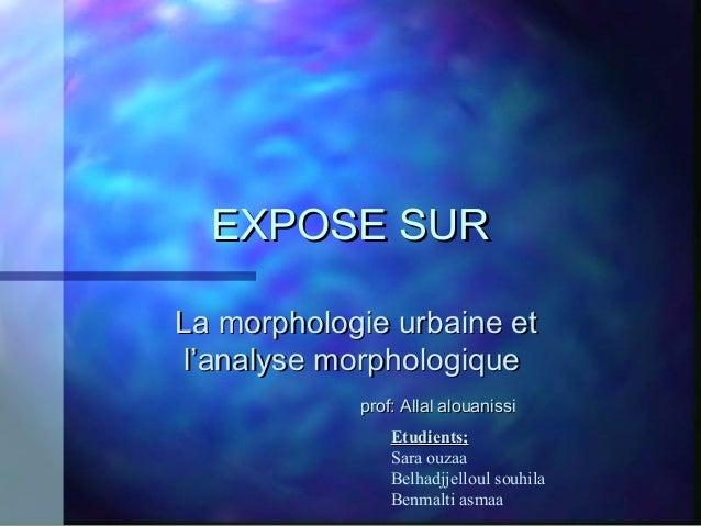 EXPOSE SUREXPOSE SUR La morphologie urbaine etLa morphologie urbaine et l'analyse morphologiquel'analyse morphologique pro...