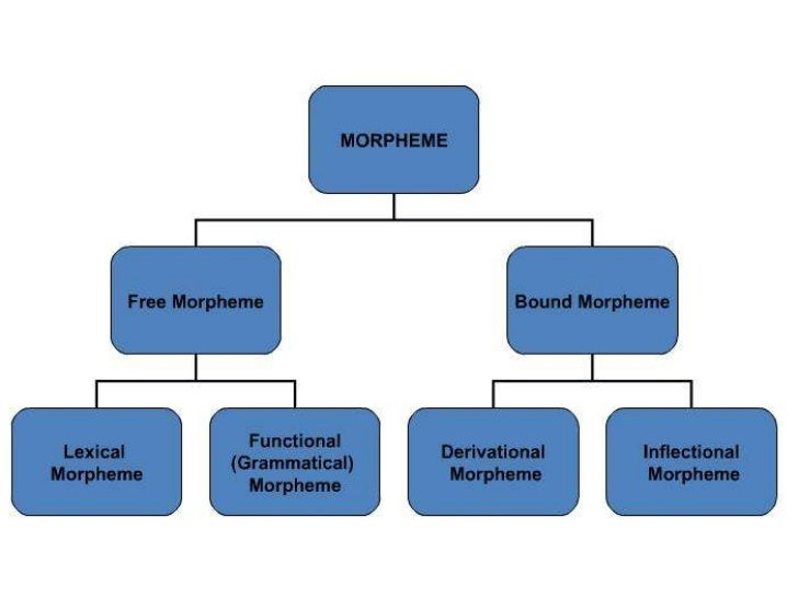 Morpheme   A morpheme is the    smallest semantically meaningful unit in a    language.   The field of study dedicated t...