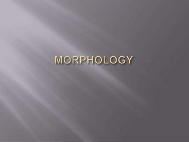 It is the branch of linguistics that studies the internal    structure of words.Morphology means the study of morphemes an...