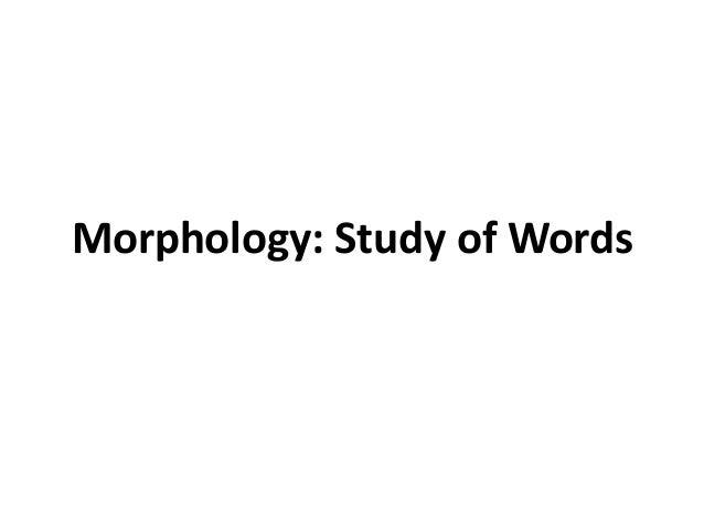 Morphology: Study of Words