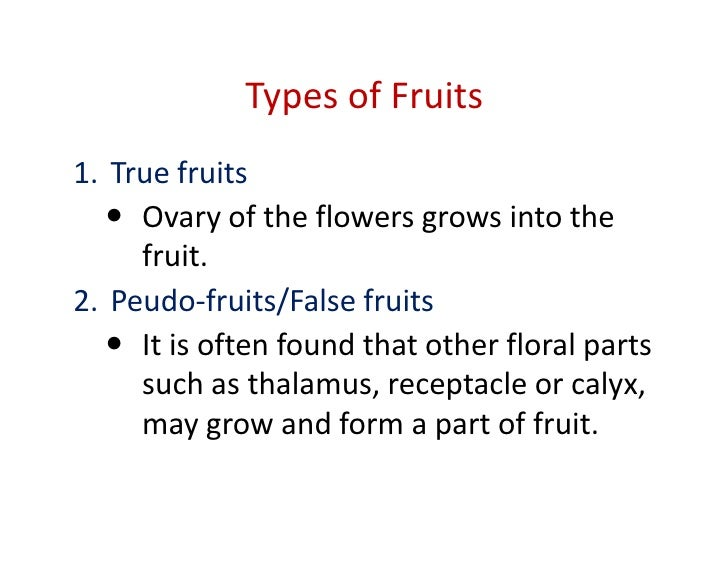 Morphology Of Fruits