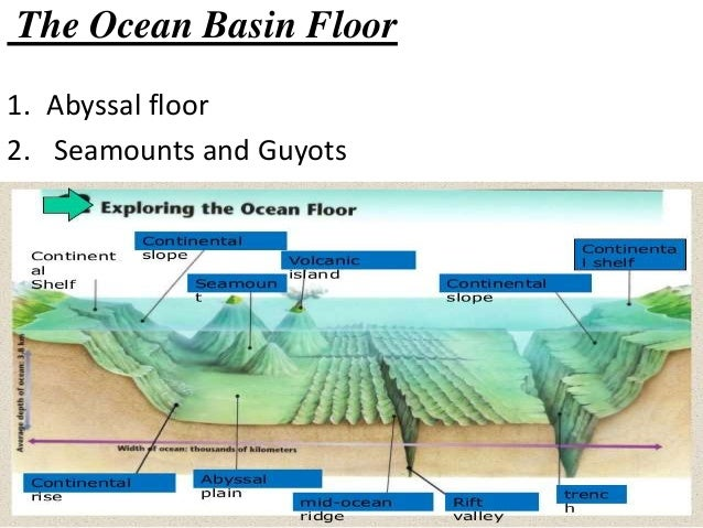 Morphology of ocean floor for Define abyssal plain