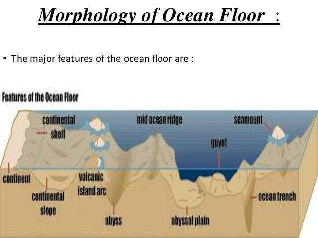 Ocean Floor Elevation : Morphology of ocean floor