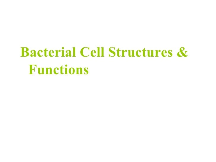 <ul><li>Bacterial Cell Structures &  Functions </li></ul>