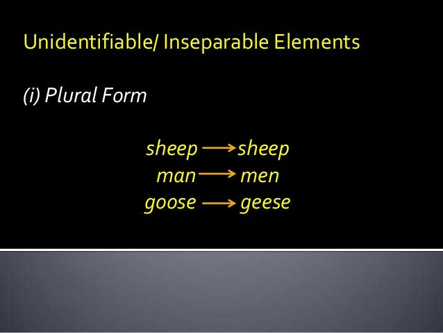 Unidentifiable/ Inseparable Elements (i) Plural Form sheep man goose  sheep men geese