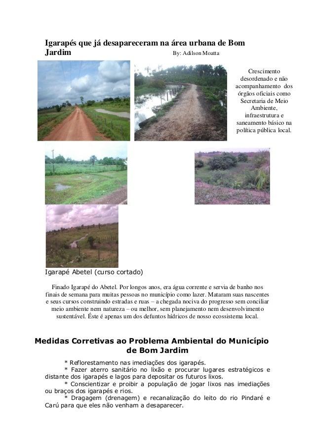 Igarapés que já desapareceram na área urbana de Bom Jardim By: Adilson Moatta Igarapé Abetel (curso cortado) Finado Igarap...