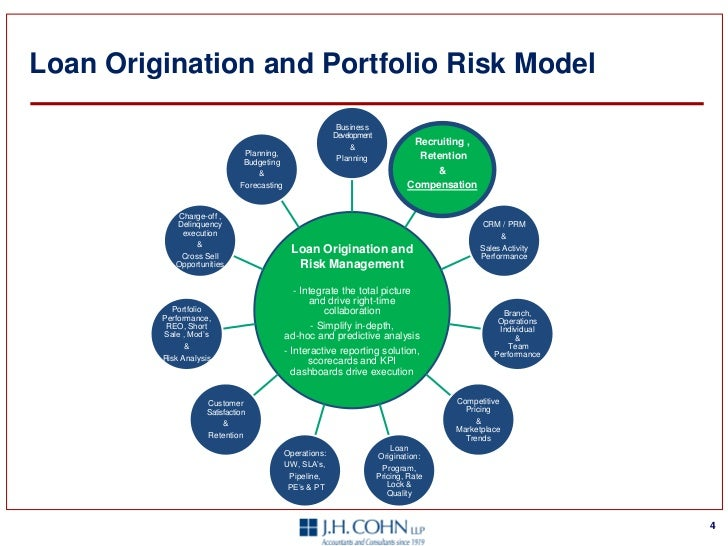 Loan Origination and Portfolio Risk
