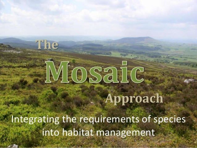 The  Approach Integrating the requirements of species into habitat management