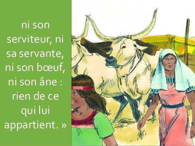ni son serviteur, ni sa servante, ni son bœuf, ni son âne : rien de ce qui lui appartient. »