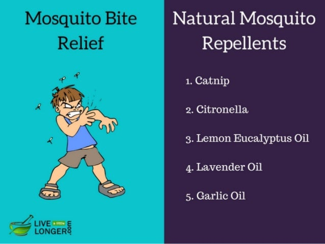 How To Get Rid Of Mosquito Bites?
